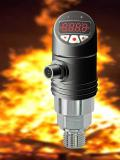 Infrared temperature sensor TE-IR with display for non-contact temperature measurement up to 1000 ° C